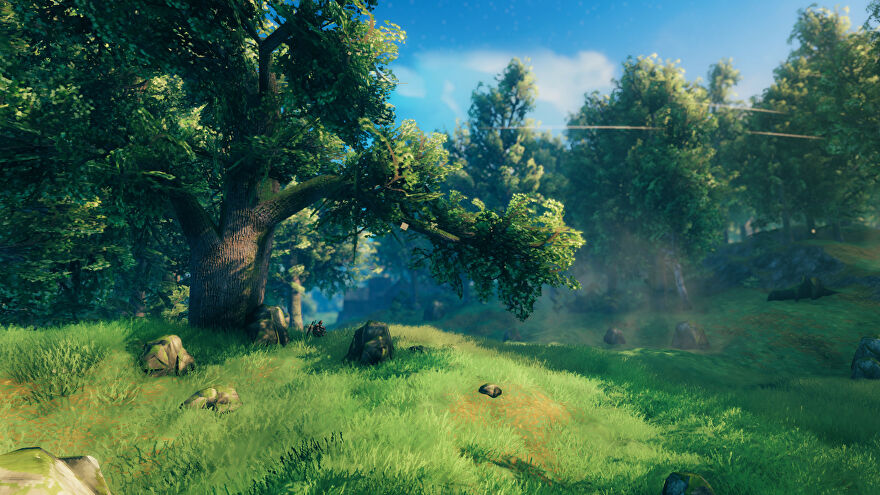 A Valheim screenshot of a Meadows biome, with a large Oak Tree in the foreground on the left.
