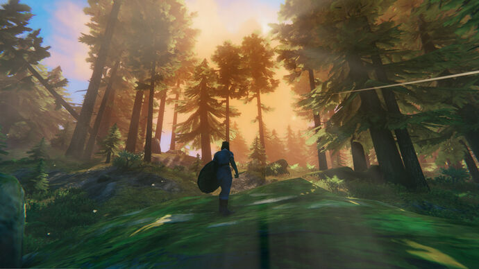 A Valheim screenshot of a player holding a shield and looking into a Black Forest biome.