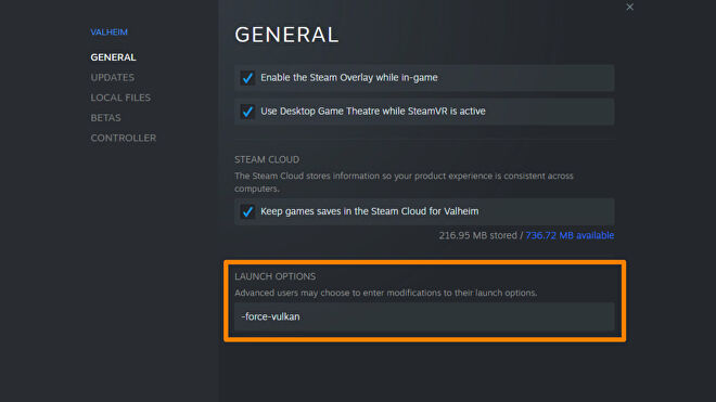 A screenshot of the Steam Properties window for Valheim, with the Launch Options input field highlighted.