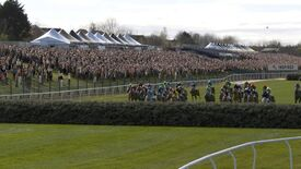 Image for Tonight's Grand National replaces real animals for a pack of digital horses