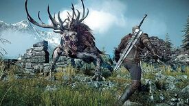 Image for CD Projekt won't abandon the Witcher universe