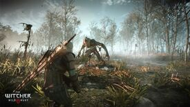 Image for Why I'm (Ever So Slightly) Worried About The Witcher 3