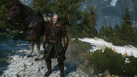 Image for Witcher 3 Patch Notes: Gravity Will Apply To All Horses