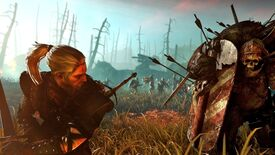 Image for The Witcher II To Land On Origin